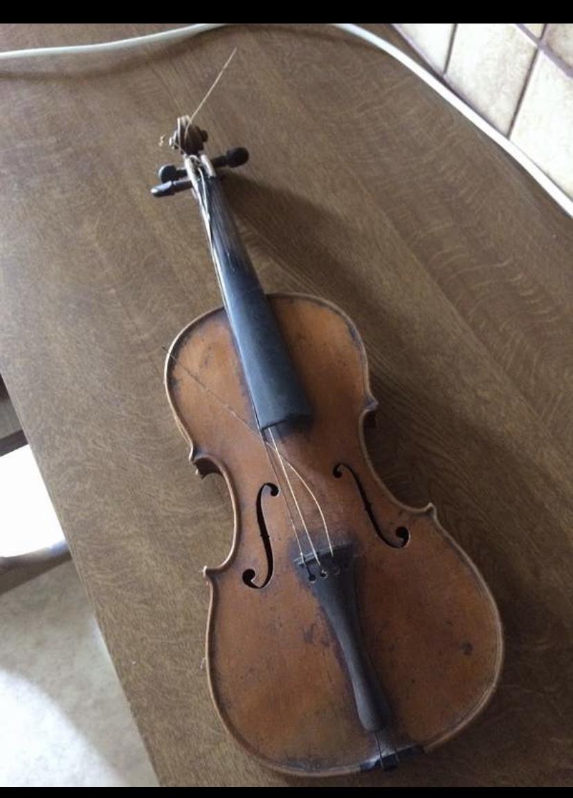 Geigenforum